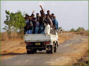Public transport in rural areas
